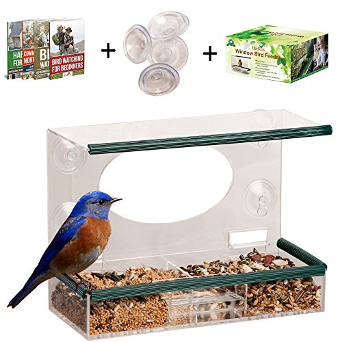 Clear Window Bird Feeder – Enjoy Unique Watch Small & Large Birds. See Through Bird House, Mounted By 4 Strong Suction Cups, Squirrel Proof With Removable Tray. Unusual Gifts for Kids & Bird Lovers